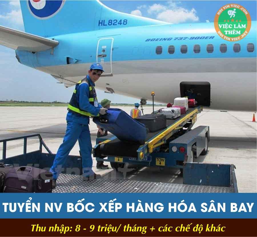 Tuyển nhân viên xếp hành lý hàng hoá sân bay nội bài – Công ty CPTM và DV Du Lịch Đại Dương