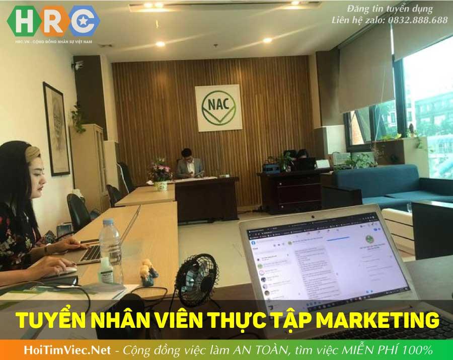 Tuyển thực tập sinh marketing – BM Agency