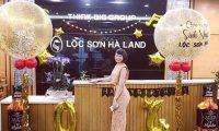 Tuyển nhân viên kinh doanh – BĐS Lộc Sơn Hà