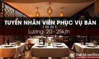 Tuyển nhân viên phục vụ – Nhà Hàng Mazzi Việt Nam