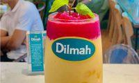 Tuyển nhân viên phục vụ ca chiều – Quán trà Dilmah