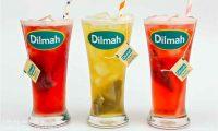 Tuyển nhân viên phục vụ ca tối – Quán trà Dilmah
